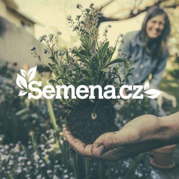 Semena.cz - úspešná záhradkárska sezóna vďaka výkonnostnému marketingu