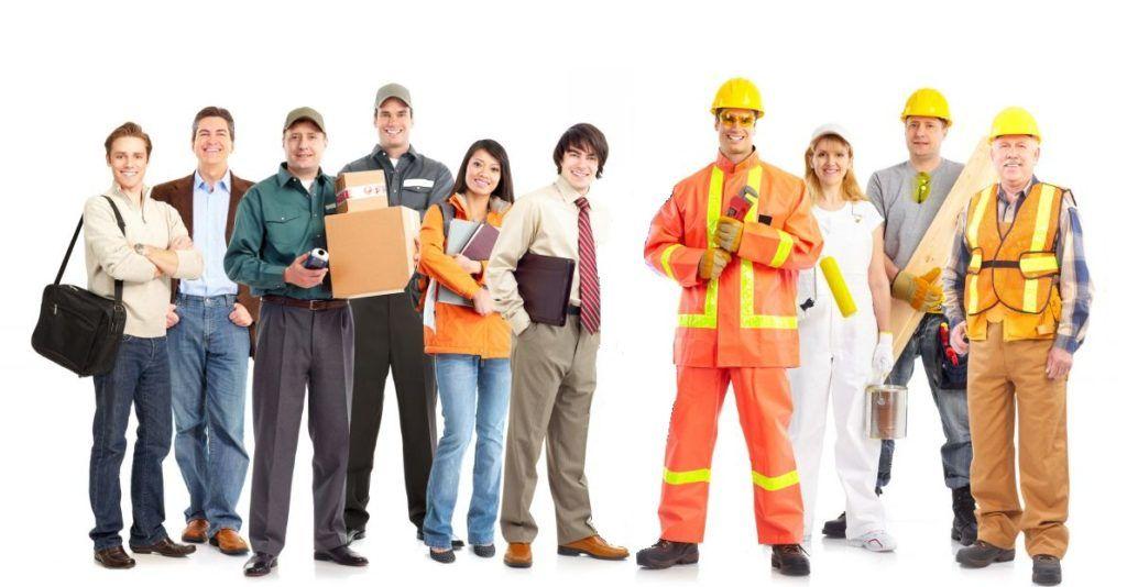 pracovnici-1024x534